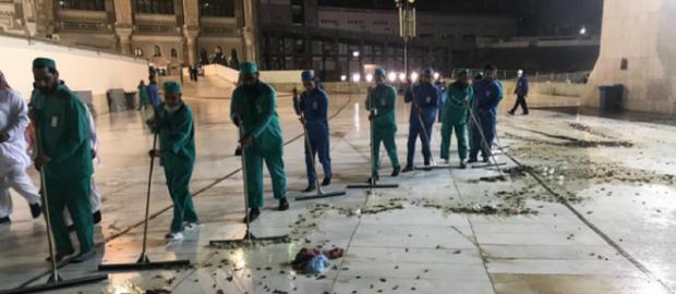 Masjidil Haram 'Diserbu' Serangga Berupa Jangkrik