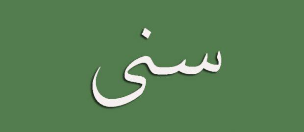 Mengenal Pejuang Idiologi Sunni-Aswaja